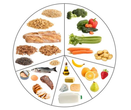 A range of suitable foods and serving sizes