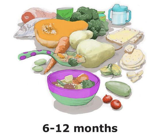 Offer the right food and drink for baby's age, 6-12 months - add smooth food, then mashed food and then finely chopped food.