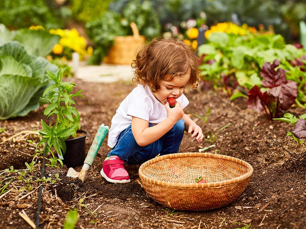Creative Play Activities Preschoolers Raising Children Network