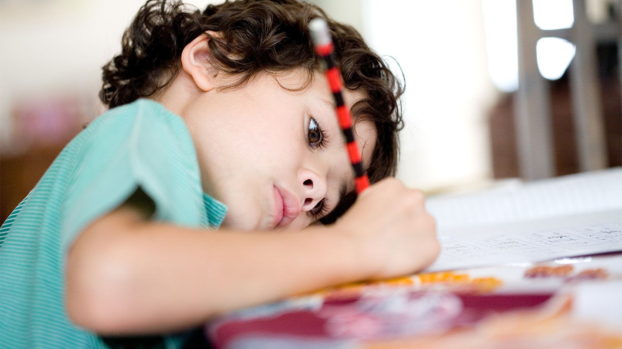 Supporting your gifted and talented child's learning